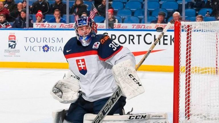 Словакия — Финляндия: прогноз на матч 11 мая 2019