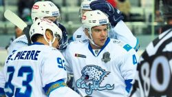 «Сибирь» — «Салават Юлаев»: прогноз на матч 20 ноября 2018