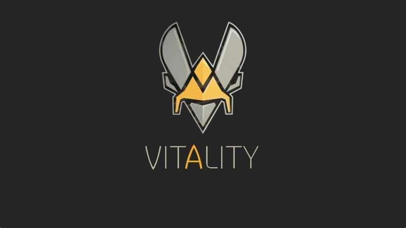 Team Vitality - Ninjas in Pyjamas: прогноз на матч 22 апреля 2020