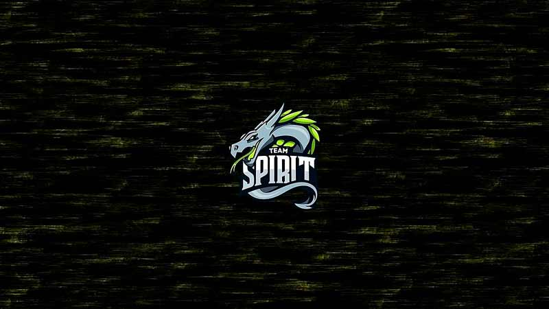 Fnatic - Team Spirit: прогноз на матч 25 мая 2020