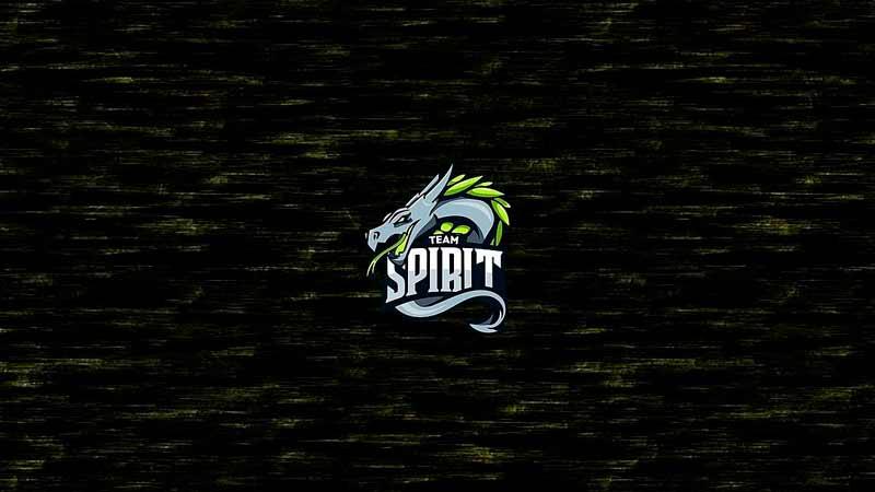 Team Spirit — Ninjas in Pyjamas: прогноз на матч 18 мая 2020