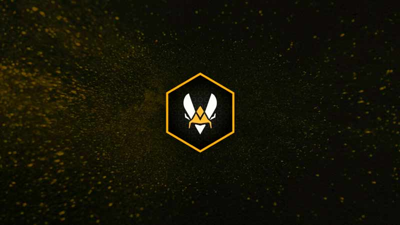Team Vitality — ENCE: прогноз на матч 29 мая 2020